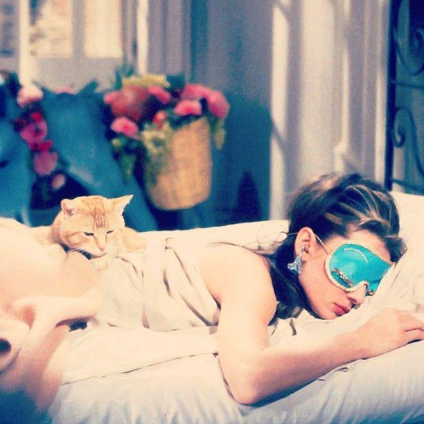 Audrey Hepburn z kotem - spanie z psem lub kotem